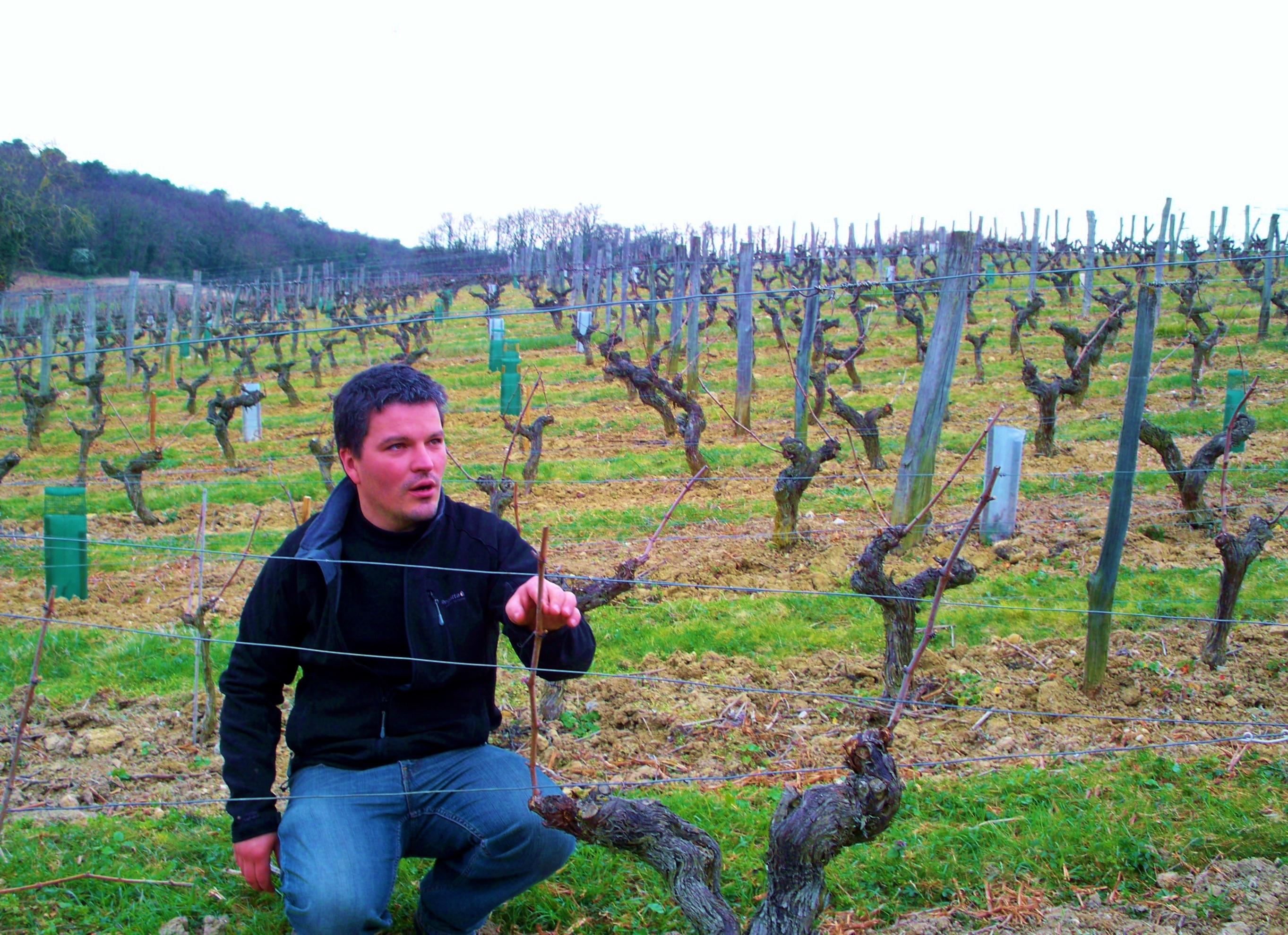 French Wine Explorers- Wine Tours in France