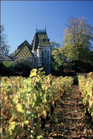 Burgundy Wine Tours- French Wine Explorers