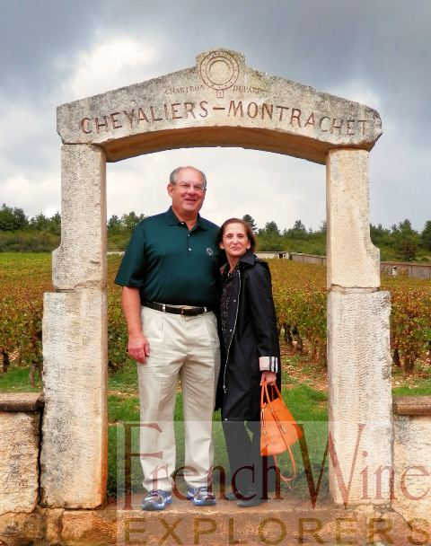 Wine Tours in Burgundy