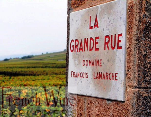 Burgundy France- French Wine Explorers