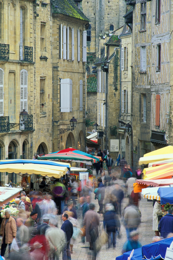 Bordeaux Wine Tours Paired with Dordogne