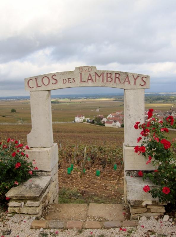 Wine Tours Burgundy- French Wine Explorers
