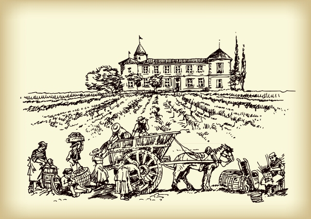 Wine Tours France