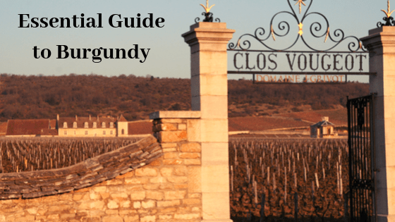 guide to burgundy