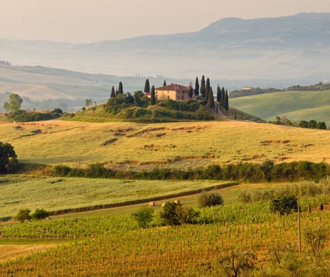 Italy Wine Tours