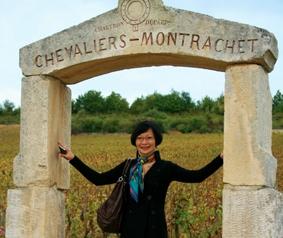 Grand Crus of Burgundy Tour
