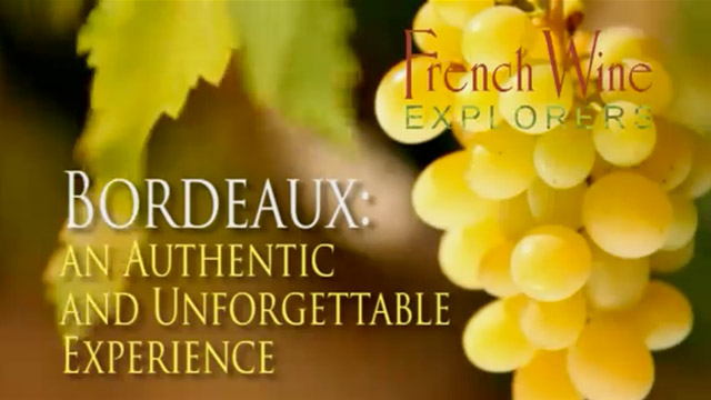Wine Tours in France: Bordeaux Wine Tours