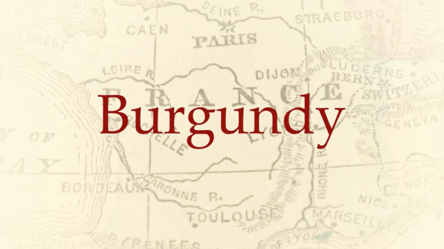 Burgundy Wine Tours: Wine Tours in France