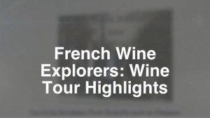 Wine Tours in France and Italy - Highlights