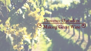 buying a vineyard in provence