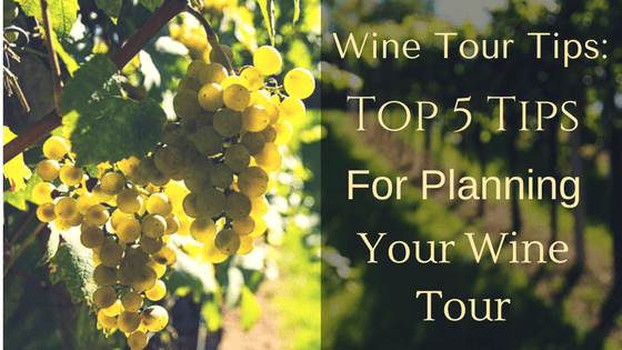 wine tour tips