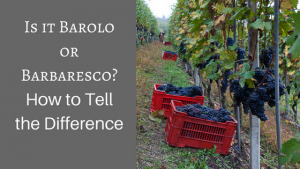 Barbaresco vs Barolo