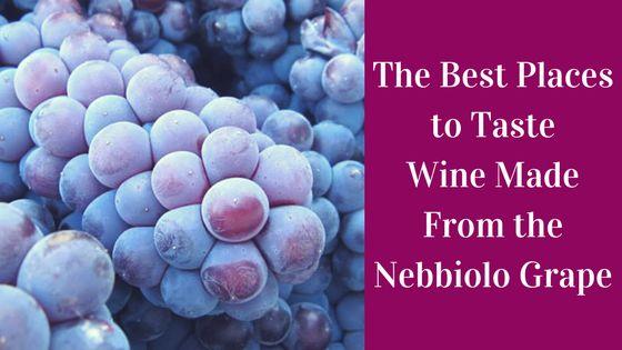 Nebbiolo wines